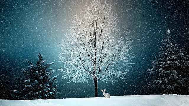Zeichnung einer Winterlandschaft, Baum mit Schnee bedeckt, Schneehase sitzt vor Baum, dunkler Abendhimmel mit Schneeflocken